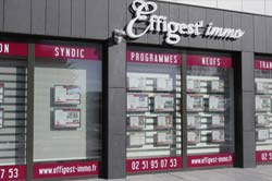 agence effigest immobilier